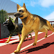Crazy dog racing by Entertainment Riders