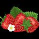Strawberry Expert System by PSPTI Fastikom UNSIQ
