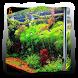 Aquarium Aquascape Design by Bidingapps