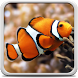 Aquarium Live Wallpaper by Creative Factory Wallpapers