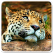Animals Live Wallpaper by Art LWP