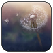 Freedom live wallpaper by vlifepaperzone