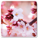 Spring Live Wallpaper by Art LWP