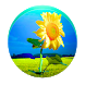 Sunflower PRO - Weather map