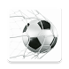 Football Betting Tips by PennyWise