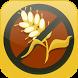 Gluten Free Diet by JKG Fit Kit Apps