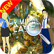 Guide for Criminal Case by Studio Mixte Pro