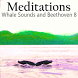 Relax W/Whales & Beethoven 8 by AGMSI Development Studios