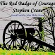 The Red Badge of Courage by ANTMultimedia, LLC