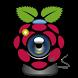Raspberry Pi Remote Monitor by danidomi