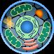 Cell World by V.I.E.W.