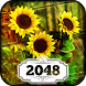 2048: Flower Power by Difference Games LLC