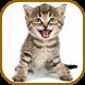 Cat Sounds Ringtones Purr by buzjabuzja