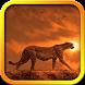 Cheetah Live Wallpaper by November Apps