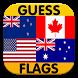 Logo Quiz : Guess Flag by Karaisson
