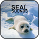 Seal Sounds by PikasApps
