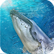 Blue Whale Game: Save fish from angry shark by Duo Labz