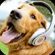 Barking Dog Sounds by buzjabuzja