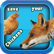 Save Your Chickens by etmgames