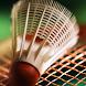 Badminton Wallpapers by verashilova