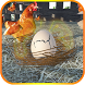 Crack The Egg: Chicken Farm by -UsefulApps-