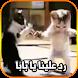 رد علينا يا بابا by kozaanmanar
