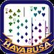 HAYABUSA Ten by HAYABUSA