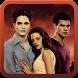 Twilight Breaking Dawn by Nyx Digital