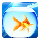 Gold Fish Live Wallpaper by Live Wallpapers Ultra