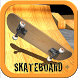 Skateboard + by Polyester Games
