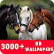 Horse Live Wallpapers HD