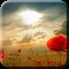 Sunrise Wallpapers HD by w3softech